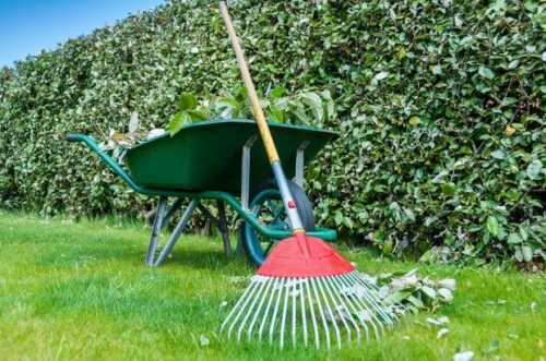 5 things to know before starting a lawn care business