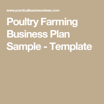 Business plan template for larvae