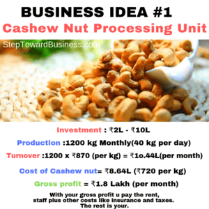 Cashew Processing Company  Business Plan