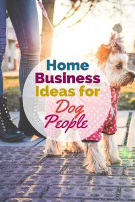 Dog ideas for small businesses