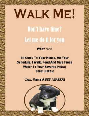 Dog walking business as a child
