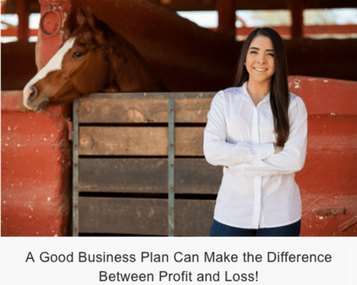 Formation of a horse breeding company - business plan template