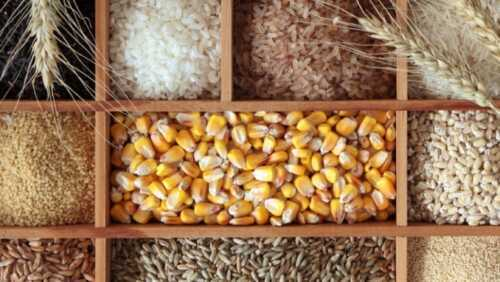Grain business