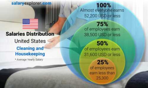 How much do cleaners make in the US