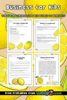 Launch Lemonade Stand  Business Plan