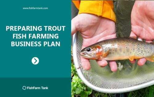 Launch of the trout farming business plan