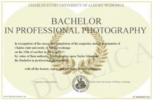 Obtain a bachelor's degree in photography