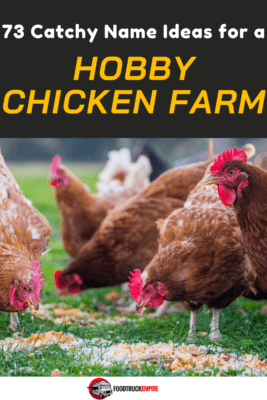 Poultry Farm Ideas Company Title