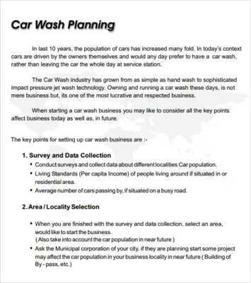 Service Car Wash Launch   Business Plan