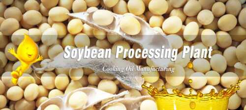 Soybean Processing Business