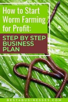 Start of a home worm breeding business with a profit