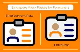 Top 15 Business Opportunities in Singapore for Foreigners 2021