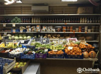 Запуск магазина товаров для животных - Образец шаблона бизнес-плана