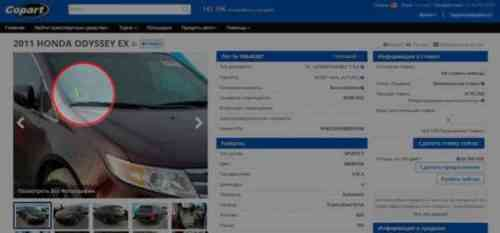Как получить лицензию на аукцион подержанных автомобилей без лота