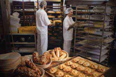 Запуск образца бизнес-плана Food Bank