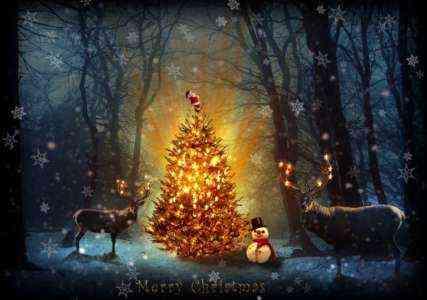 Запуск шаблона бизнес-плана «Рождественская елка на ферме»