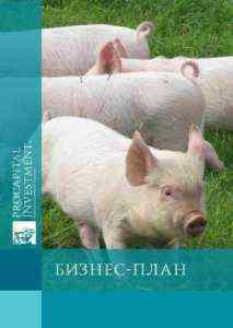 Образец шаблона бизнес-плана для свиноводства