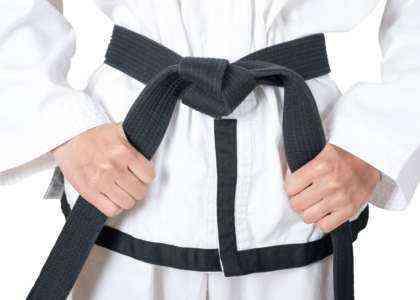 Образец шаблона бизнес-плана школы боевых искусств