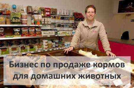 Начиная бизнес магазина кормов