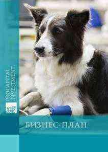 Образец шаблона бизнес-плана ветеринарной клиники