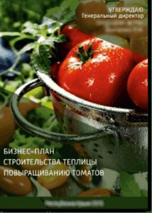 Образец шаблона бизнес-плана завода по переработке томатов