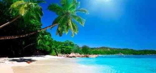 Топ 10 возможностей для малого бизнеса на Бермудских островах