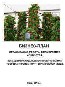 Запуск шаблона бизнес-плана для службы садоводства