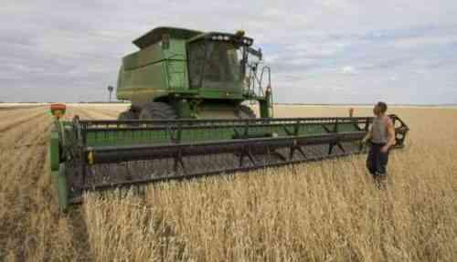 Образец шаблона бизнес-плана для фермерского хозяйства