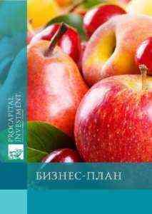 Образец шаблона бизнес-плана экспорта фруктов