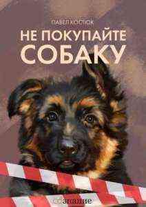 Начиная бизнес по дрессировке собак дома