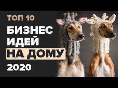50 лучших идей малого бизнеса для собак на 2020 год