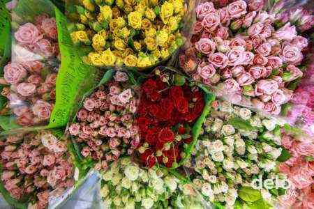Начиная бизнес срезанных цветов