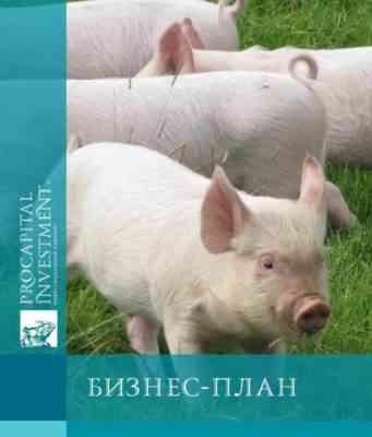 Образец шаблона бизнес-плана фотографии домашних животных