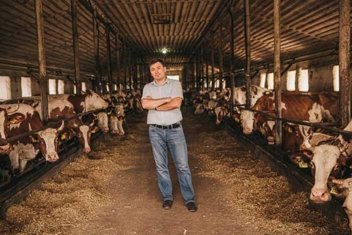 Как открыть животноводческую ферму: коммерческое животноводство
