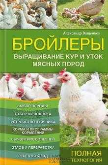 Бройлерное птицеводство: руководство для начала бизнеса по выращиванию мясных кур