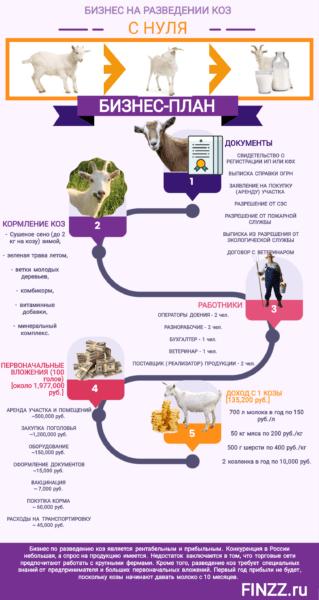 Бизнес-план козоводства для начинающих (полное руководство)